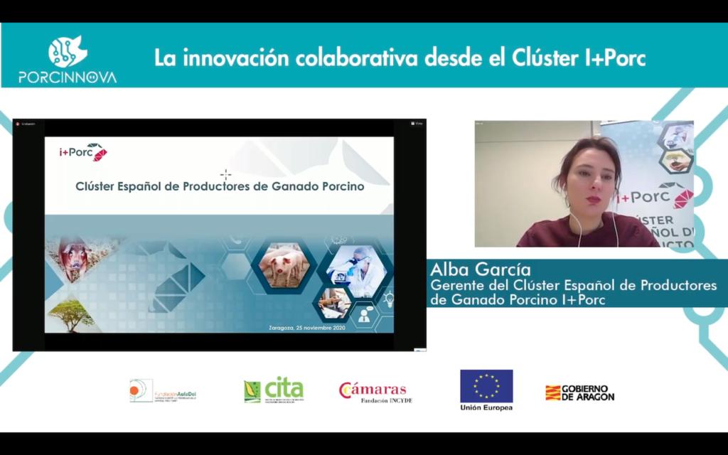 Alba García - Clúster i+Porc