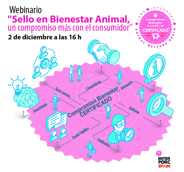 bienestar animal en el sector porcino