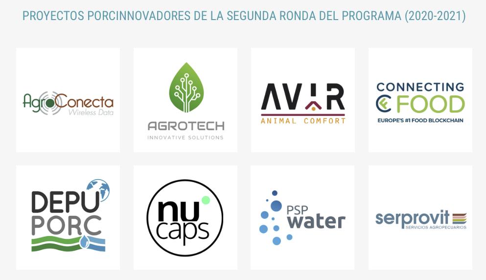 Los 8 proyectos porcinnovadores de la segunda ronda