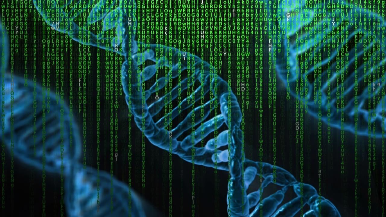herramienta bioinformática para identificar el genoma porcino