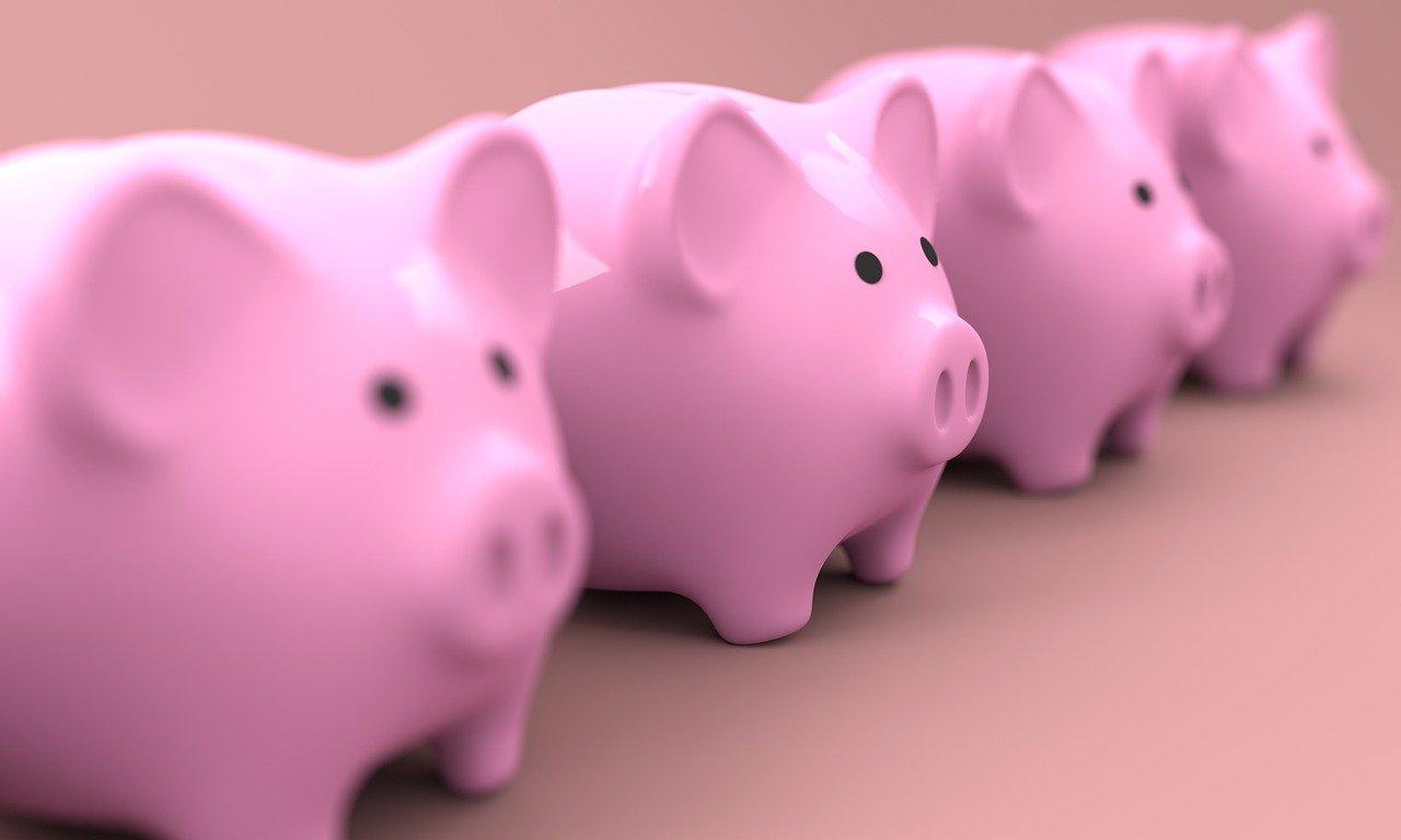 sector porcino en España